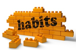 The 7 IT Habits of Highly Successful LA Distributors