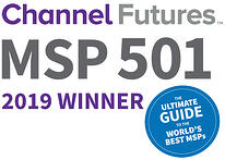 msp501-2019-winner-badge